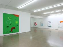 Hanspeter Hofmann: pleasue centers